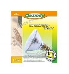 Dragon Breeding Light 120w